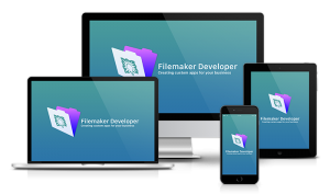 Filemaker Developer